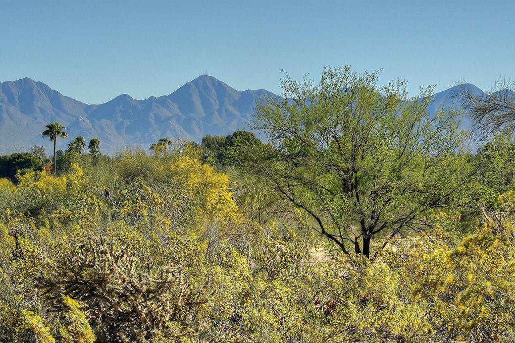 7815 N Ironwood Dr Lot 8 Paradise Valley, AZ 85253