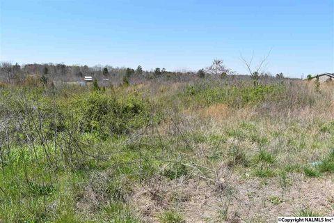 Photo of Lo5 County Road 140, Ider, AL 35981