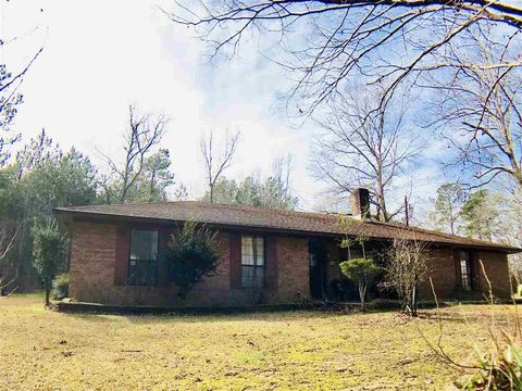 Photo of 402 Creek St, Raleigh, MS 39153