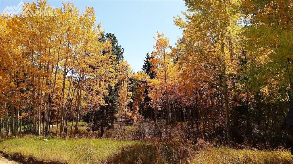 86 Bear Creek Dr Florissant, CO 80816