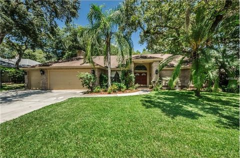 4511 Glenbrook Dr Palm Harbor FL 34683