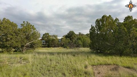 36 Jackrabbit Run, Datil, NM 87821