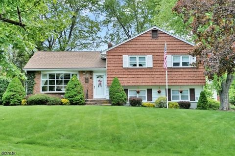 8 Lilac Pl, Randolph, NJ 07869