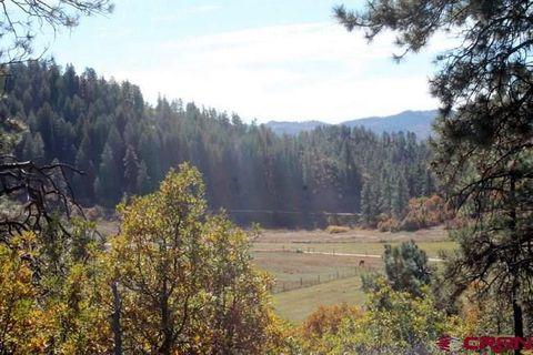 Bear Canyon Dr, Bayfield, CO 81122