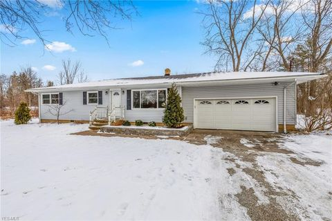 17813 Snyder Rd, Chagrin Falls, OH 44023