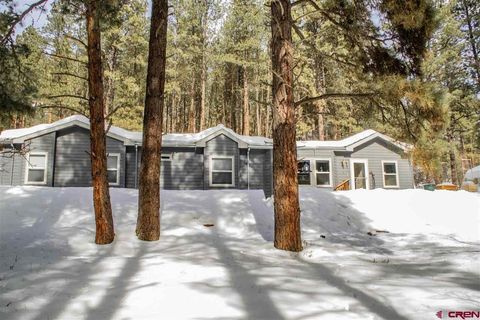 Photo of 79 Cub Ct, Bayfield, CO 81122
