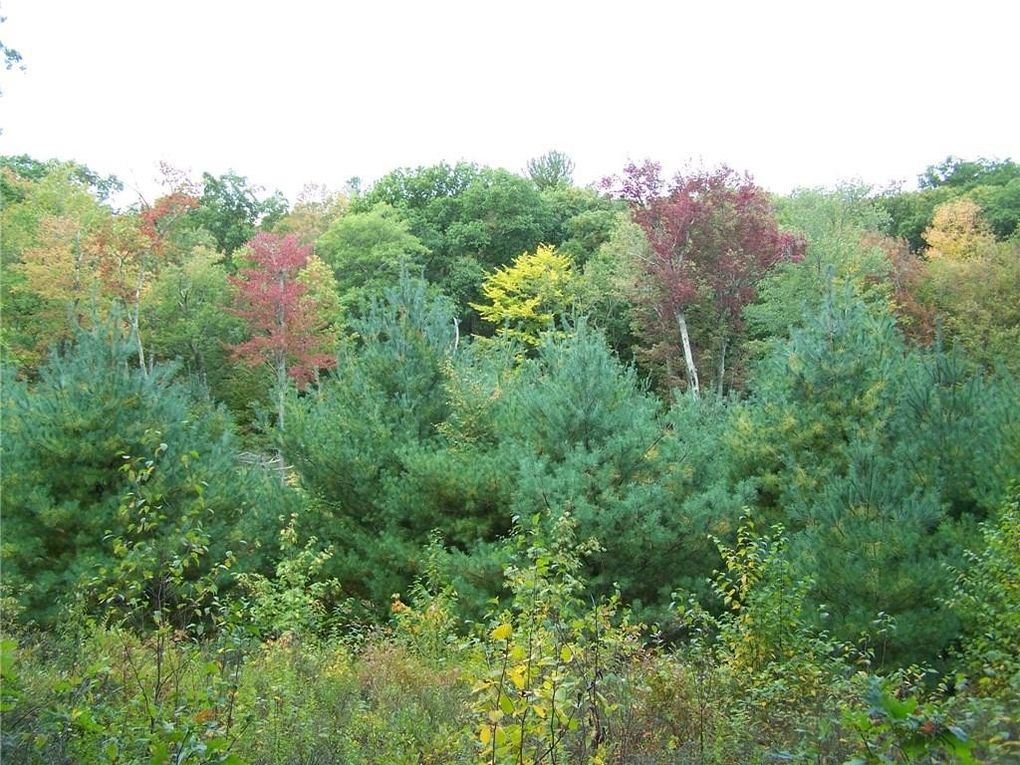 49 Mount Tom Rd Washington Ct 06777 Land For Sale And