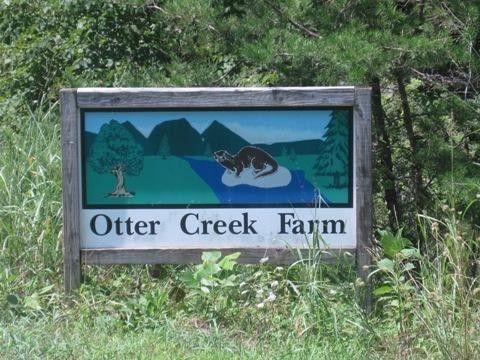 Otter Dr, Ferrum, VA 24088