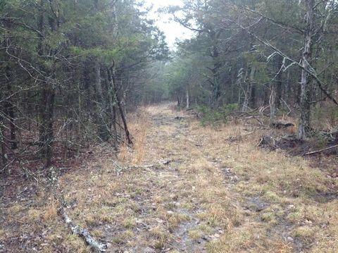 Photo of 40 Acres Posy Mountain Dr, Garfield, AR 72732