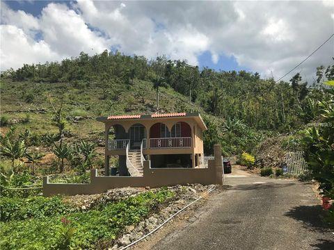 4130 Bo Hato Viejo Cumbre, Ciales, PR 00638