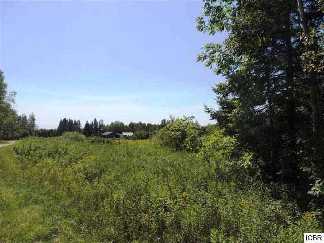 999 turtle crk rd marcell mn 56628 land for sale and real estate listing