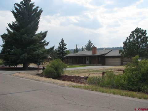 Photo of 61 Birch St, South Fork, CO 81154