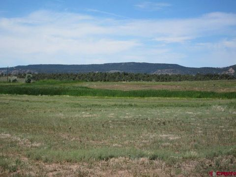 762 County Road 975, Arboles, CO 81121