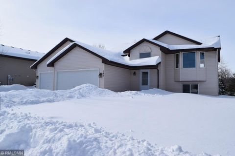 Photo of 143 Hill St, Montrose, MN 55363