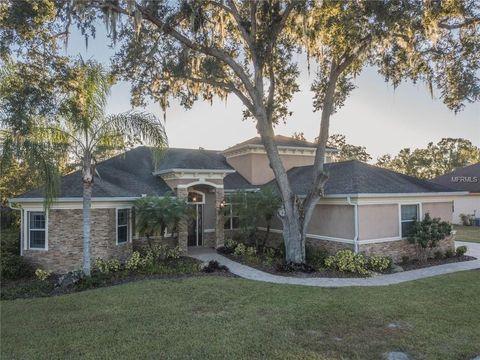 Lakes At Christina Lakeland Fl Real Estate Homes For Sale