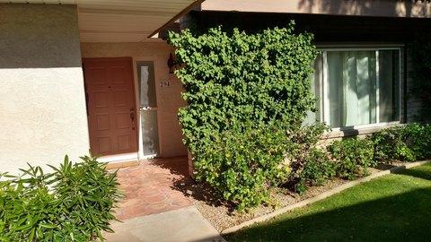 4800 N 68th St Unit 294, Scottsdale, AZ 85251