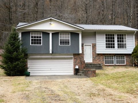 229 Lowes Br, Pikeville, KY 41501