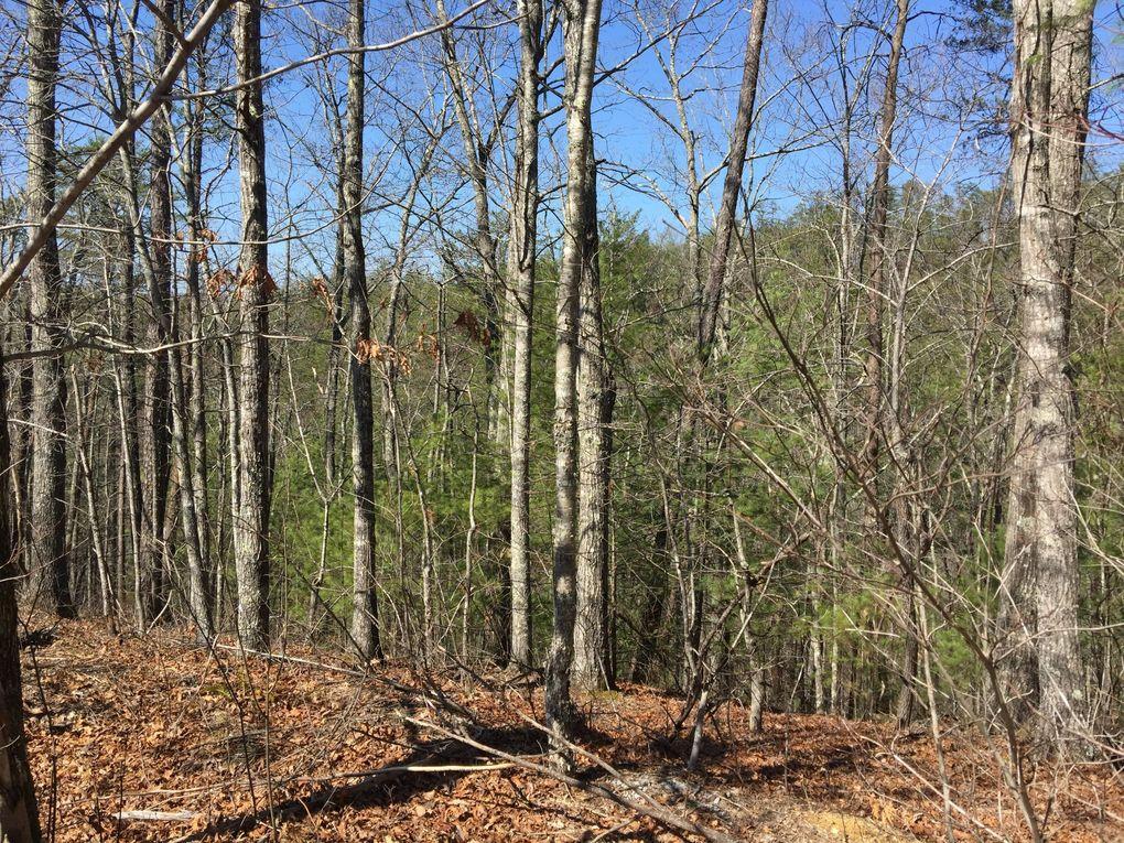 245 Mountain Retreat Rd, Townsend, TN 37882