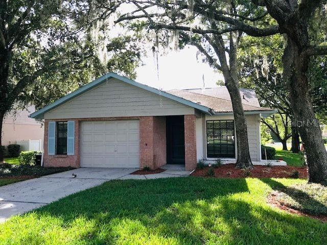 11629 Pear Tree Dr New Port Richey, FL 34654