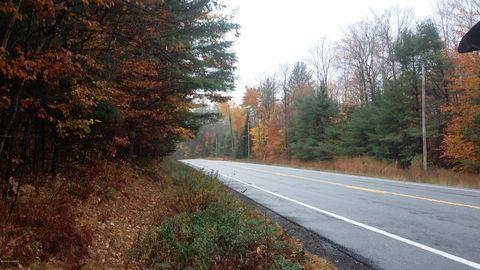 1670 Route 28, Johnsburg, NY 12843