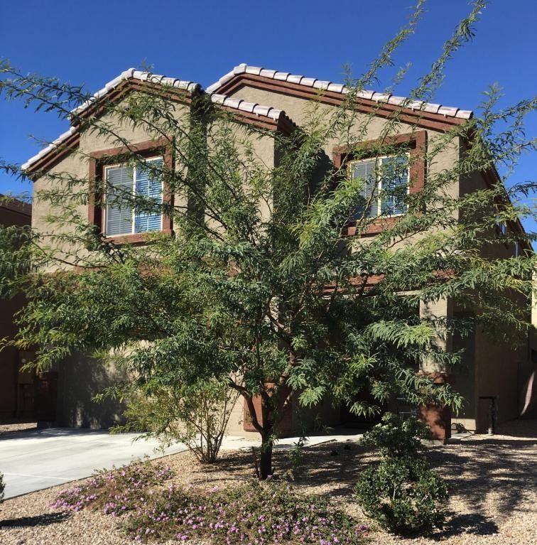 8779 N Norway Spruce Rd, Tucson, AZ 85743
