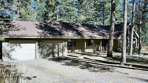 803 Centre Camino, Woodland Park, CO 80863
