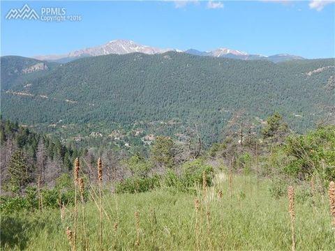 8210 Bear Dance Hts, Cascade, CO 80809