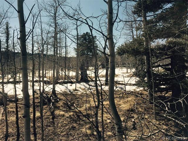 453 pueblo dr jefferson co 80456 land for sale and