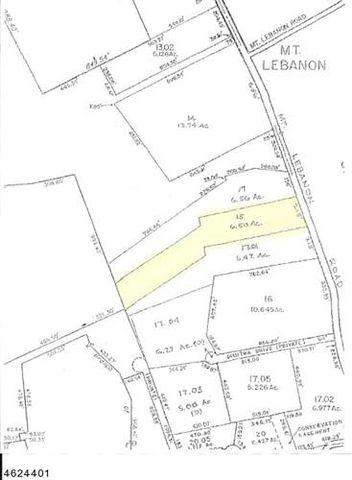 glen gardner nj land for sale real estate realtor The New GTA 6 photo of 107 mount lebanon rd lebanon nj 08826