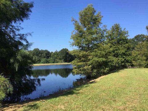 Forest Ms Real Estate Amp Homes For Sale Realtor Com 174