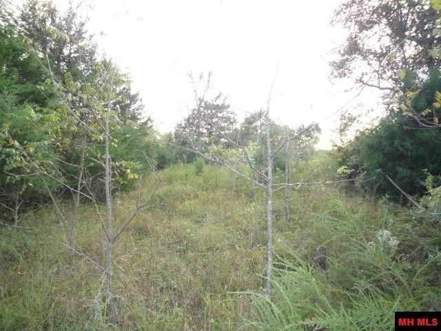 cutter ln midway ar 72651 land for sale and real