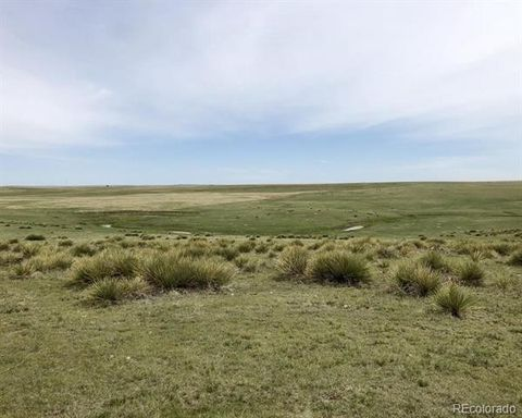 02 County Road 153, Agate, CO 80101