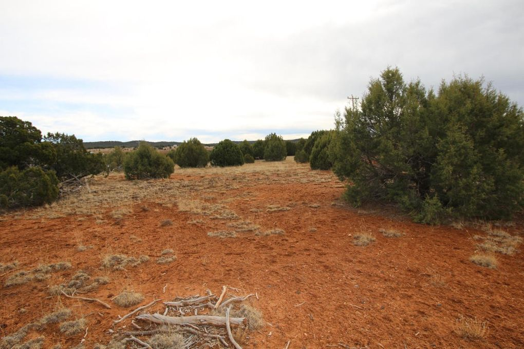 Homes For Sale In Clay Springs Az