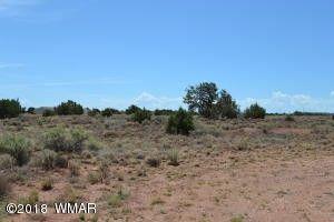 9621 E Concho Hwy Snowflake, AZ 85937