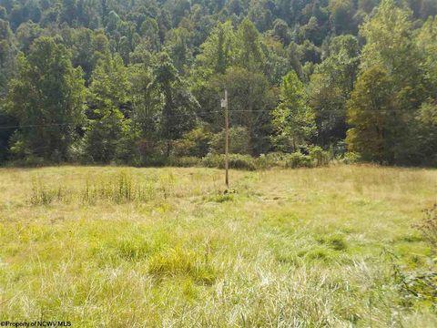 Photo of Pheasant Run Rd, Kerens, WV 26276