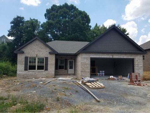 Photo of 604 Nettle Tree Ct, Johnson City, TN 37604