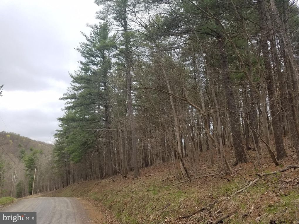 Fort Enochs Mdw Lot 4 Paw Paw, WV 25434