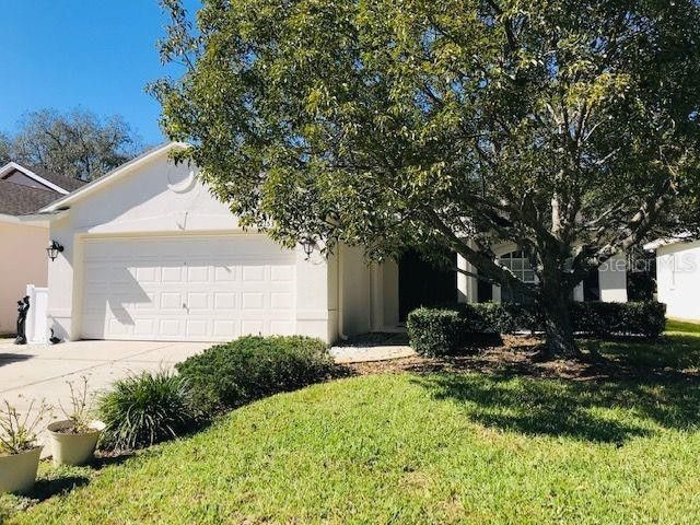 12153 Loblolly Pine Dr New Port Richey, FL 34654