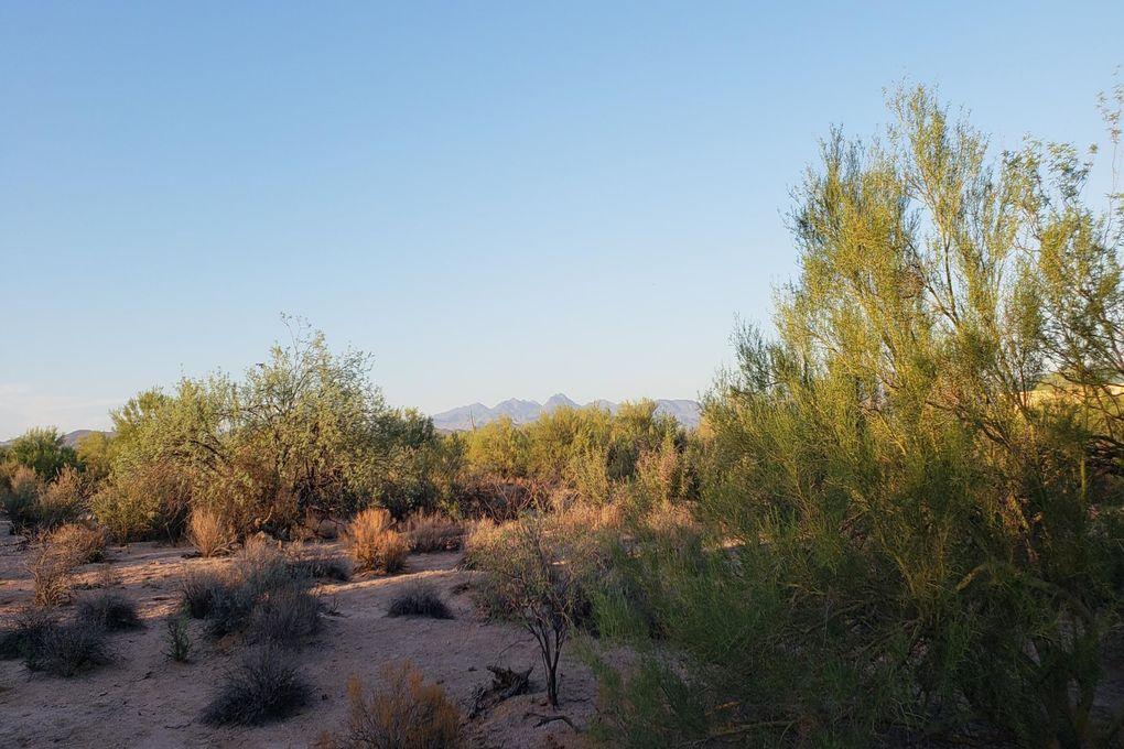 163XX E Lone Mountain Rd Lot 166 Scottsdale, AZ 85262