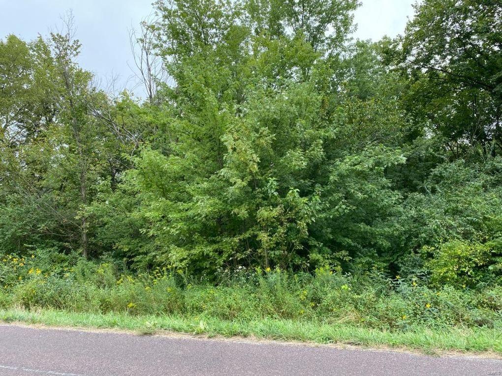 Elm Tree Rd Troy, MO 63379