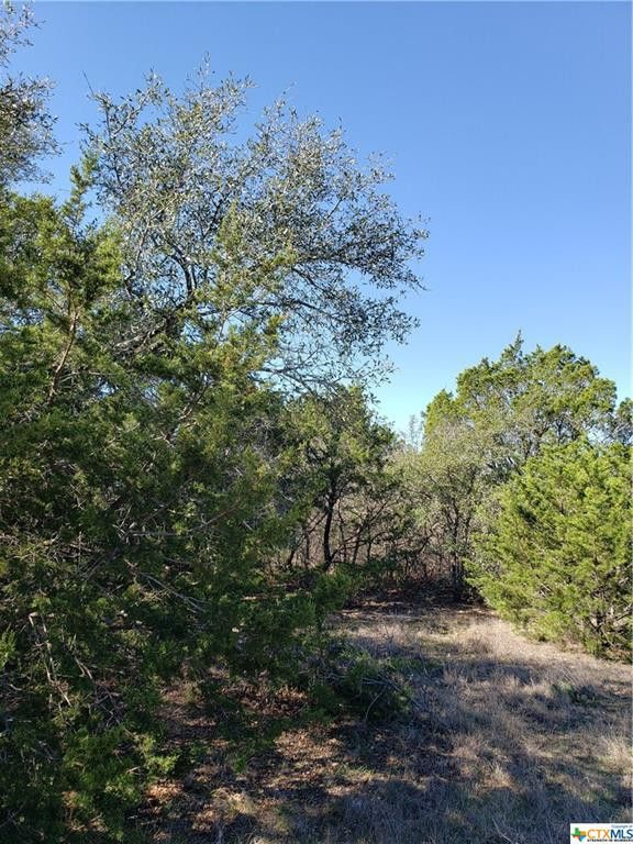 105 High Mesa Dr Gatesville, TX 76528