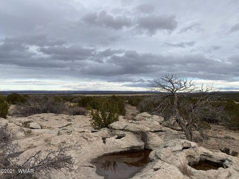 Photo of Elk Valley Rnch Lots 55 & 1, Saint Johns, AZ 85936