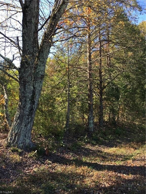 7 Acre Bald Hill Loop Madison, NC 27025
