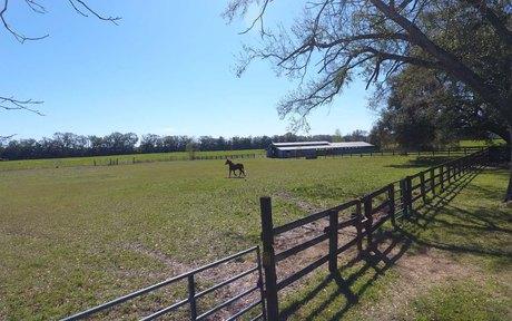 farm_land