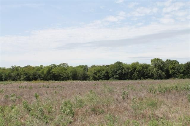 Tract 3 County Road 2260 Quinlan, TX 75474