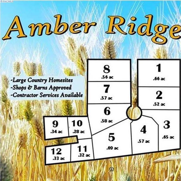 101 Amber Ridge Rd Lot 1 Palouse, WA 99161
