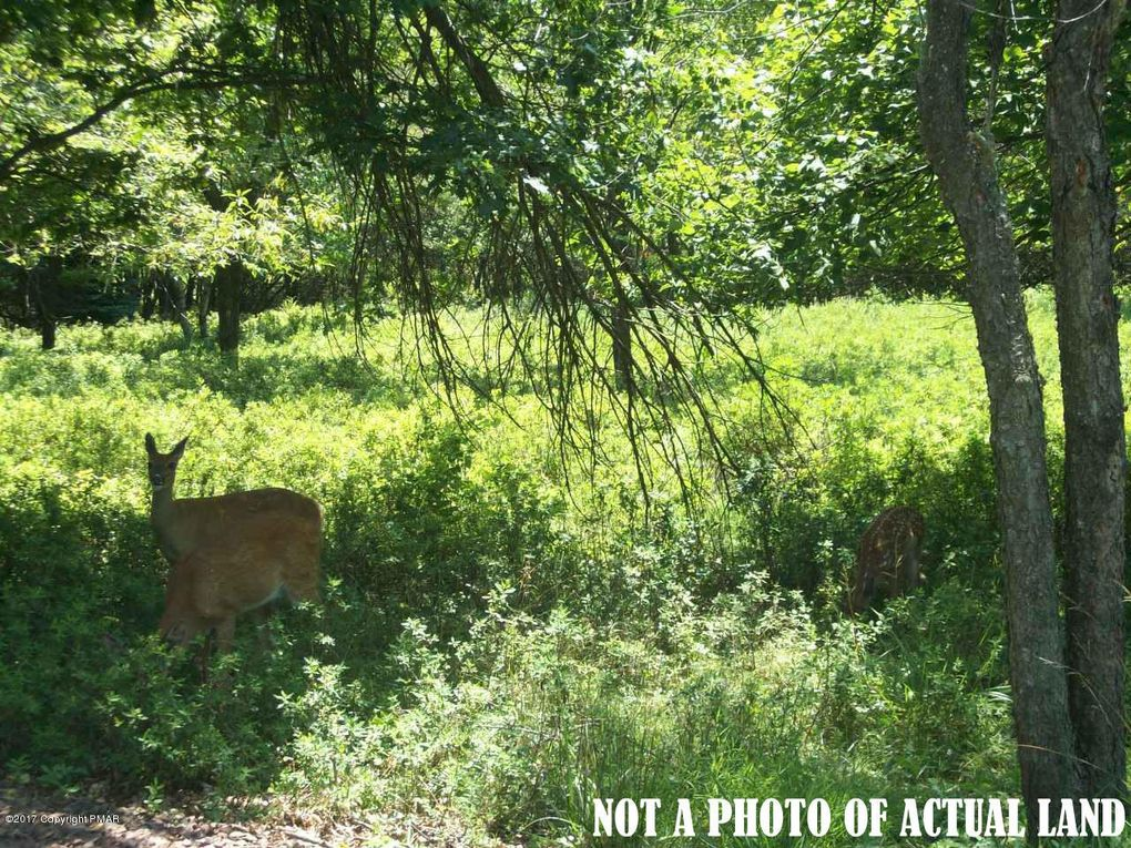 Ev962 Stony Mountain Rd Albrightsville, PA 18210