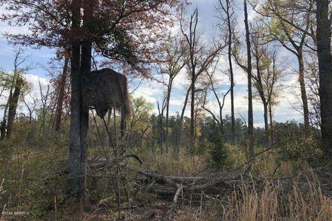 Photo of 1465 Firetower Rd, Pineland, SC 29934