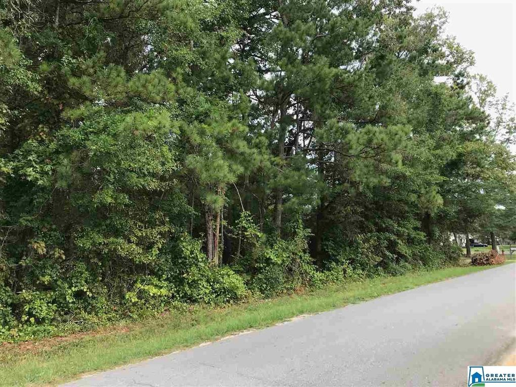 N College St Lots 20,21,22,23 and Part of # 24 Glencoe, AL 35905