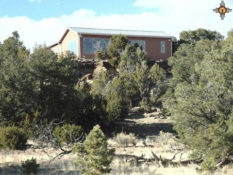 Photo of 20 Pinon Valley Dr, Pie Town, NM 87827